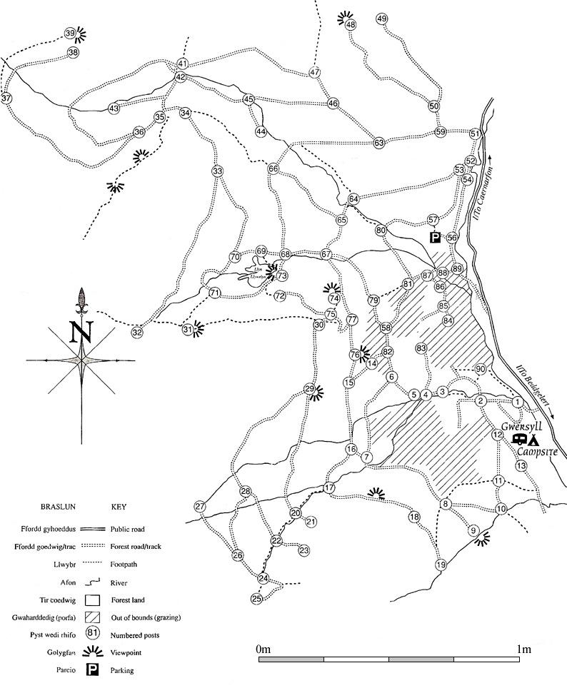 Beddgelert Forest cycling map