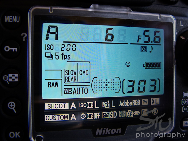 D700 Rear Screen