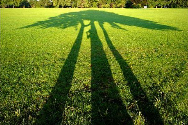 shadow photography8