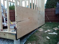covering shed with plywood