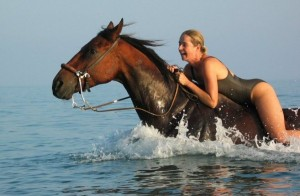 horse swimming 300x196 Top 10 most intelligent animals