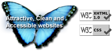 Attractive, clean 							and accessible websites.