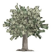 NO MONEY ON TREES! Please Consider a Donation. Thanks