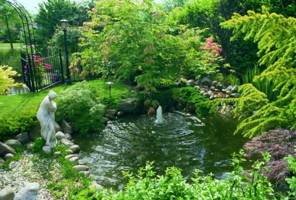Budujemy ogród japoński – cz.1- wprowadzenie
