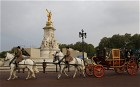 Royal wedding: military in full-scale dress rehearsal Up to a thousand members of the military have carried out a pre-dawn royal wedding dress rehearsal