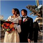 Weddings and Celebrations