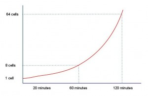 Exponential Change