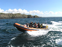 MCA licenced dive RHIB charter