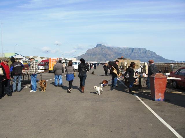 friendsandagreatmountainview Milnerton Flea Market; leashed and loving it!