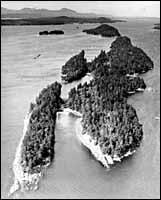 Wallace Island Small