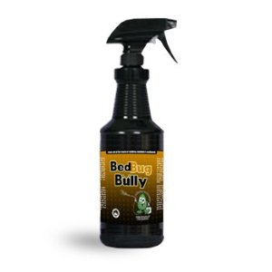 bed bug spray What are Bed Bugs