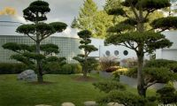Amazing Asian Inspire Garden and Lancdscaping Ideas