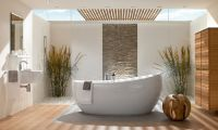 Natural Bathroom Design with Unique Bathtubs Design by Villeroy
