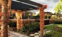 Romantic Garden Design – Outdoor Family Retreat by Eckersley Garden Architecture