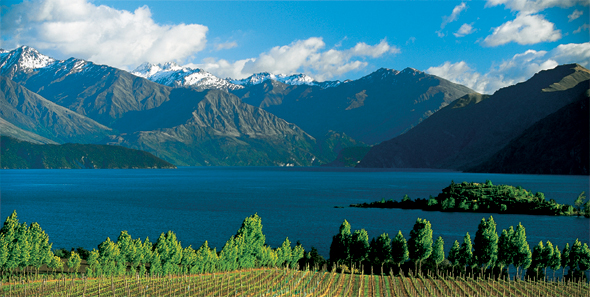 Central Otago's climate produces wines with a subtly different character © Gilbert van Reenen