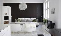 Comfortable Black and White Interior Design Decorating Ideas