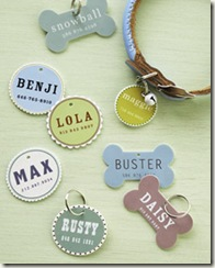 bone and circle shaped pet ID tags, and collar