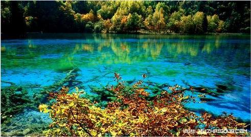 图片:九寨沟最美的季节