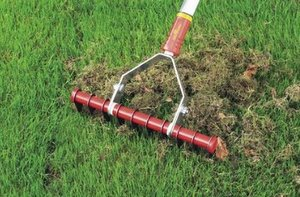 ALL ABOUT LAWN DETHATCHING RAKES