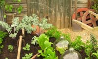 Traditional Vegetable Garden Layout and Picture – Vegetable Garden Layout Ideas