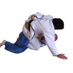 Brazilian Jiu Jitsu moves