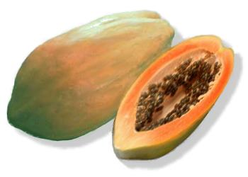 papaya Natural Home Remedies