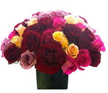 Multicolor Mixed Roses