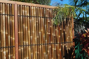 Fencing with bamboo