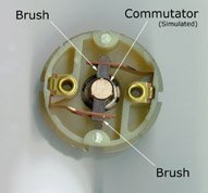 """Photo 2. The brushes in a """"can"""" motor are held in place by alloy leaf springs that also serve to carry current. The commutator has been simulated with a piece of dowel with some markings on it to better show how it mates with the brushes."""