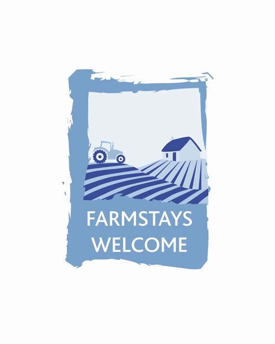 Farmstay -experience life on a hill farm & agritourism business in the West of Ireland -cattle,sheep, Connemara Ponies, Donkeys