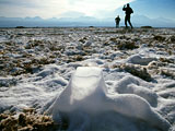 Tourists on a salt flat in Chile.