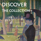 Discover the Collection