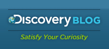 Discovery Blog - Satisfy Your Curiosity