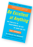 Be Excellent at Anything book cover