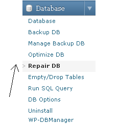 WP-DBmanager repair