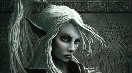 Feriel Picture  (2d, fantasy, elf, portrait, girl, woman, warrior)
