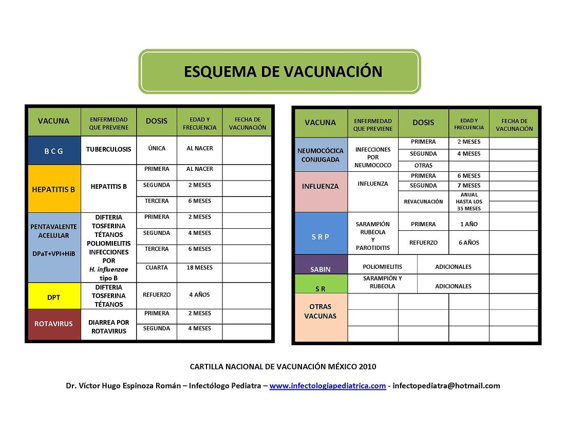 cartilla esquema vacunas mexico
