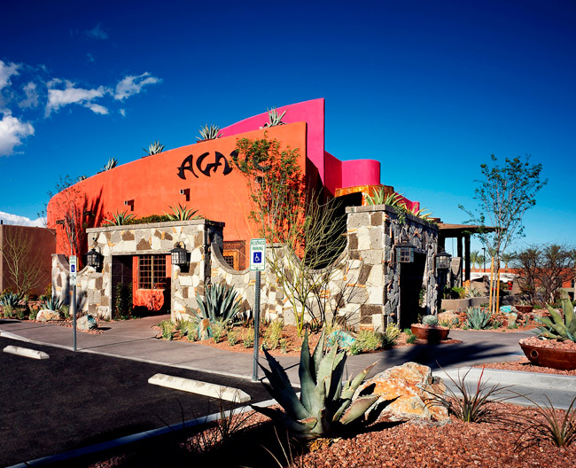 Agave, Summerlin
