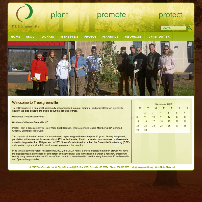 New Web Site Design for Trees Greenville by Mojoe.net