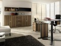 Elegant Contemporary Oak Home Office Decorating Ideas