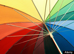 Poll Position: Should Groups Like Asexuals And The Polyamorous Be Included Under The Queer Umbrella?