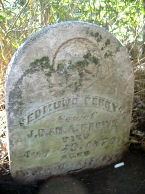 Edmund Perry Brown died as an infant in 1870 and is buried in the family plot on private property in western Lancaster County.