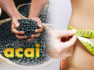 'Superfood' Acai May Not Be Worth Price