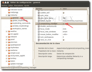 Activamos compositing_manager