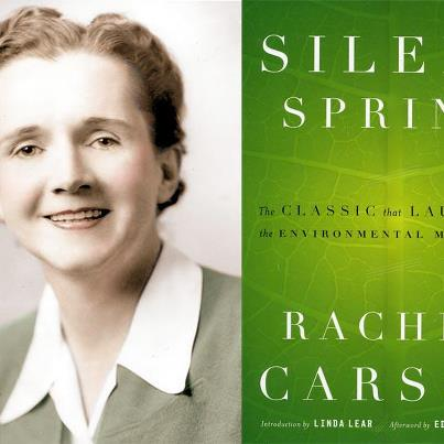 "Photo: 'SILENT SPRING' MARKS 50 YEARS: We're tipping our hats today to Rachel Carson—a pioneer scientist who was one of the first two women hired in a non-clerical position with the Bureau of Fisheries, the present-day NOAA Fisheries Service. Carson is perhaps best known for her groundbreaking book ""Silent Spring""  that was widely credited for helping launch the environmental movement. This week, fans turned out in Woods Hole, Mass., to celebrate Carson and plans for a local monument in her honor: http://1.usa.gov/RoRc2G"