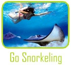 Grand Cayman Snorkeling and Stingray City Tours