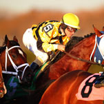 A Jockey Is Cool, Calm and Collecting Millions