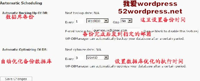 121 WP数据库插件WP DBManager全攻略