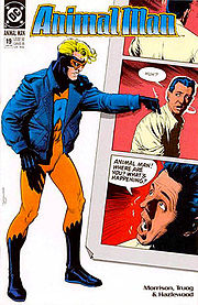 Breaking the fourth wall. Cover to Animal Man #19.  Art by Brian Bolland.