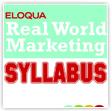 Eloqua Real World Marketing Syllabus